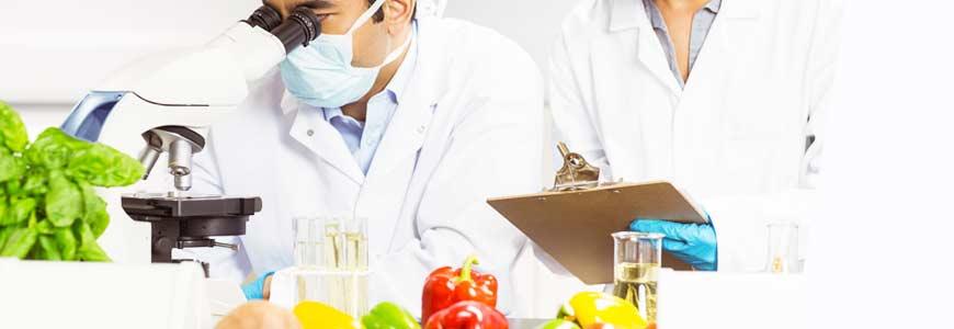 Auditor Interno de Seguridad Alimentaria ISO 22000:2018